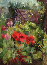 Poppies in Bloom. 2004