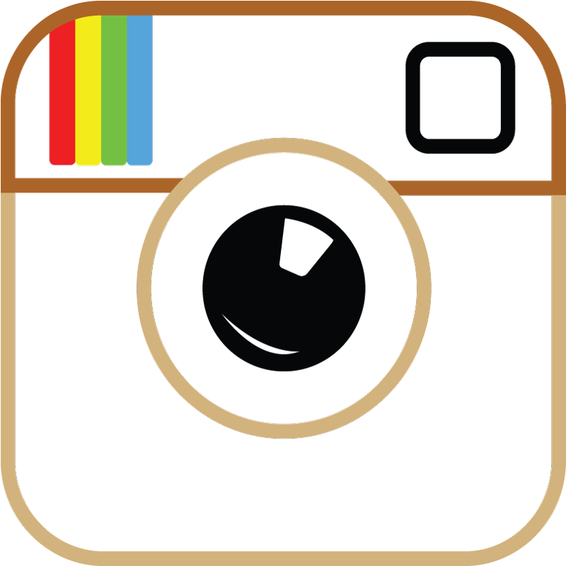 instagram_logo_transparent_background_vector